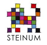 Steinum